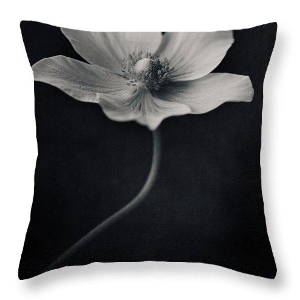 catch the light Throw Pillow by Priska Wettstein