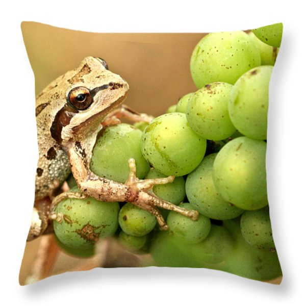 Catching a ride on the pinot Throw Pillow by Jean Noren