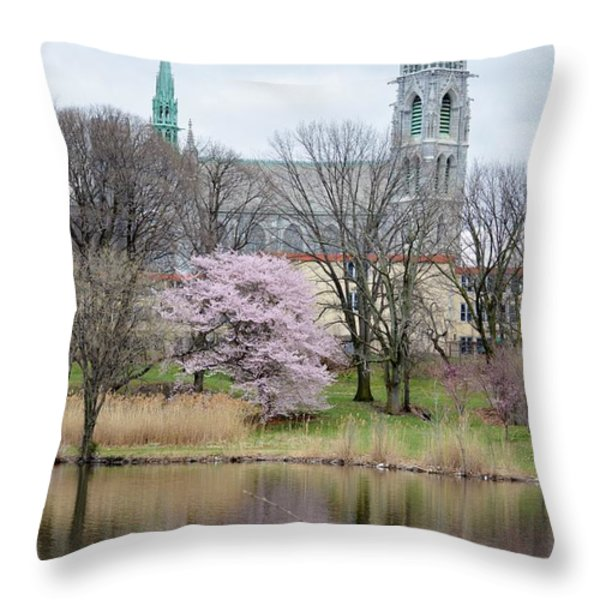 Cathedral Basilica Throw Pillow by Sonali Gangane