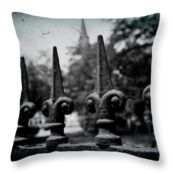 Cathedral Fence Throw Pillow by Scott Pellegrin