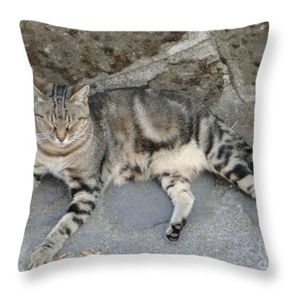 Catouflage Throw Pillow by Barbie Corbett-Newmin