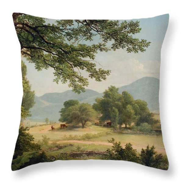 Catskill Meadows In Summer Throw Pillow by Asher Brown Durand