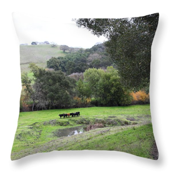 Cattles at Fernandez Ranch California - 5D21066 Throw Pillow by Wingsdomain Art and Photography