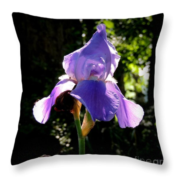 Caught In The Light Throw Pillow by Rabiah Seminole