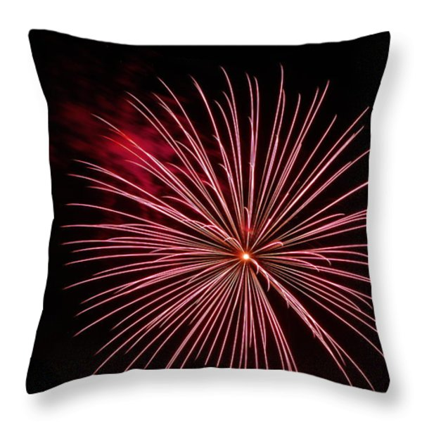 Celebration XVII Throw Pillow by Pablo Rosales
