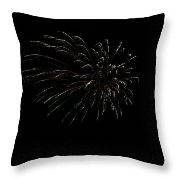 Celebration XXVI Throw Pillow by Pablo Rosales