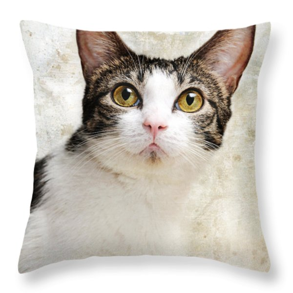 Celebrity Throw Pillow by Andee Design