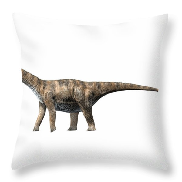 Cetiosaurus Oxoniensis, Middle Jurassic Throw Pillow by Nobumichi Tamura