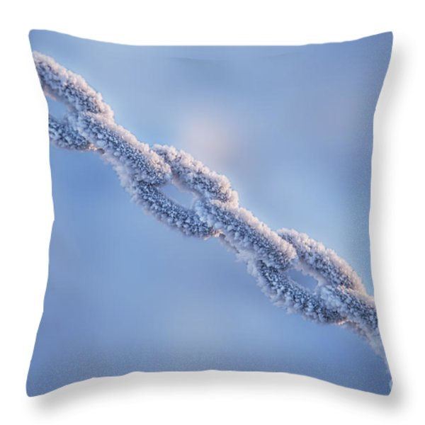 Chain Reaction Throw Pillow by Evelina Kremsdorf