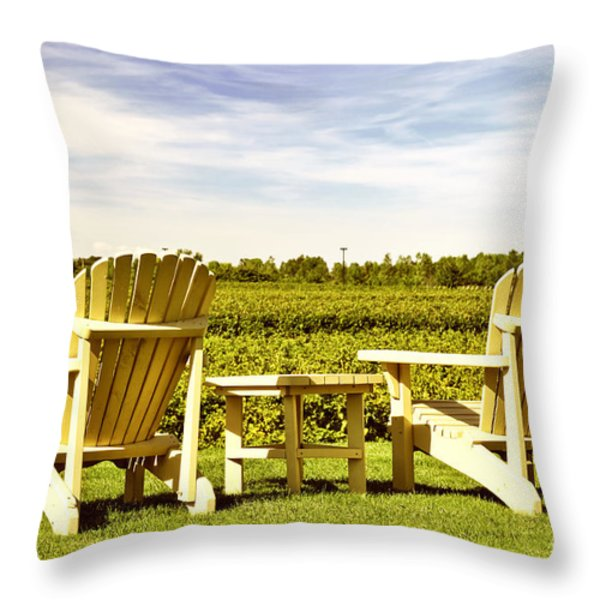 Chairs overlooking vineyard Throw Pillow by Elena Elisseeva