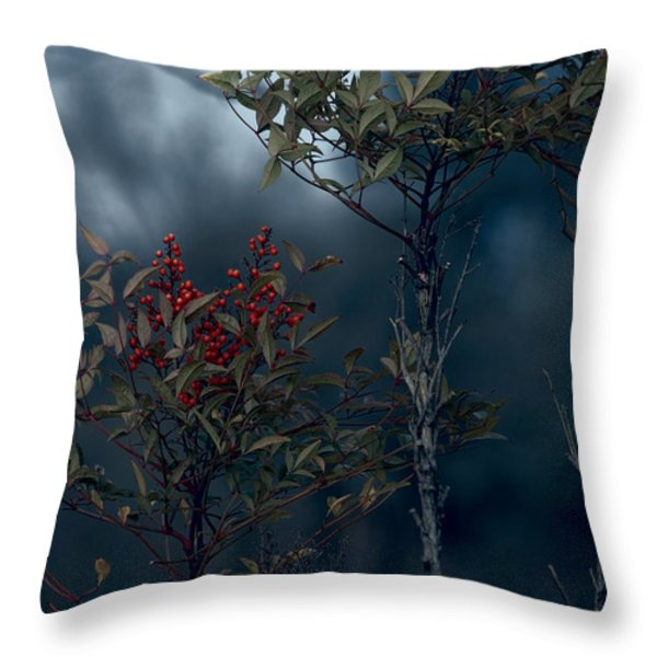 Change of Season Throw Pillow by Bonnie Bruno