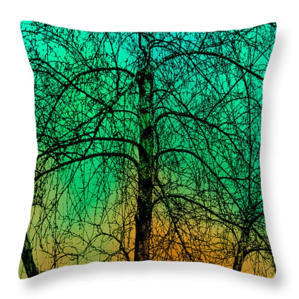 Change of Seasons Number Tw0 Throw Pillow by Bob Orsillo