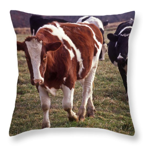 CHARGING Throw Pillow by Skip Willits