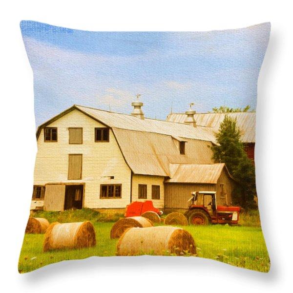 Charlotte Vermont Gem Throw Pillow by Deborah Benoit