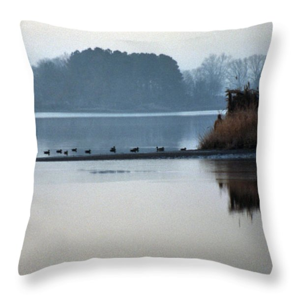 CHECKING THE SPREAD Throw Pillow by Skip Willits