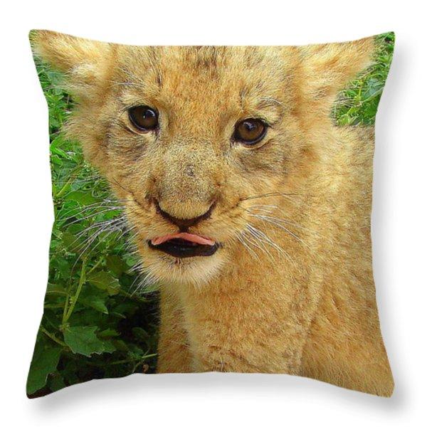 Cheeky Cub Throw Pillow by Ramona Johnston