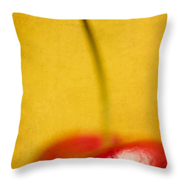 Cherry Bliss Throw Pillow by Amy Weiss