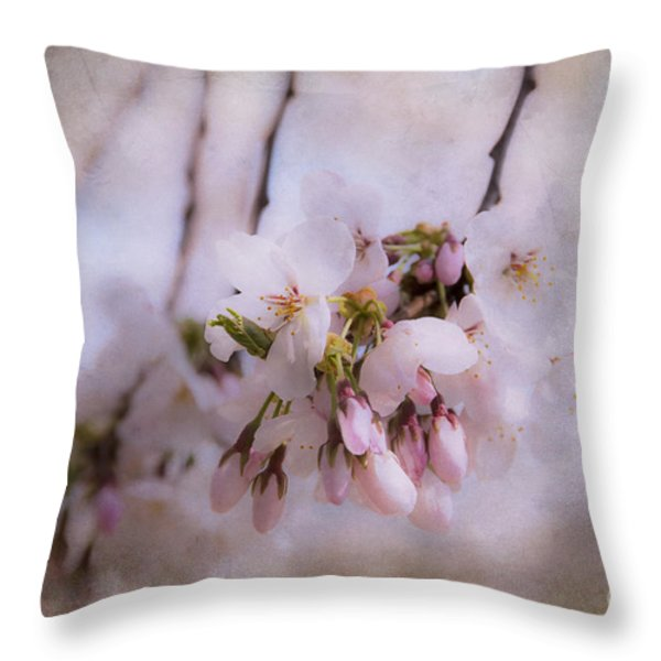 Cherry Blossom Dreams Throw Pillow by Terry Rowe