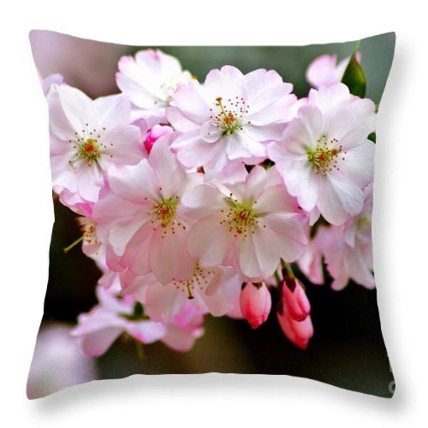 Cherry Blossoms And A Bee Throw Pillow by Patti Whitten