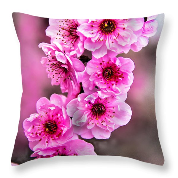 Cherry Blossoms Throw Pillow by Robert Bales