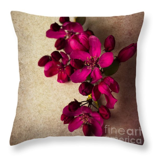 Cherry Pie Throw Pillow by Jan Bickerton
