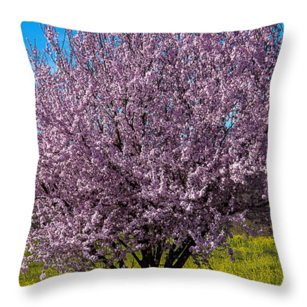 Cherry Tree In Bloom Throw Pillow by Garry Gay