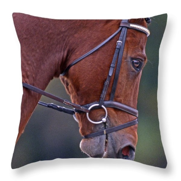 Chestnut Throw Pillow by Skip Willits