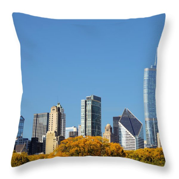 Chicago skyline from Millenium Park III Throw Pillow by Christine Till