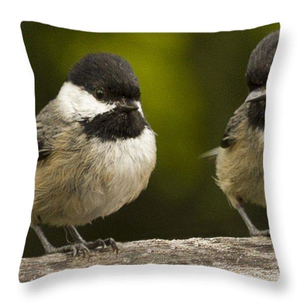 Chickadee Dee Dee Throw Pillow by Jean Noren