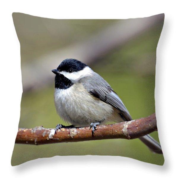 Chickadee Throw Pillow by Susan Leggett