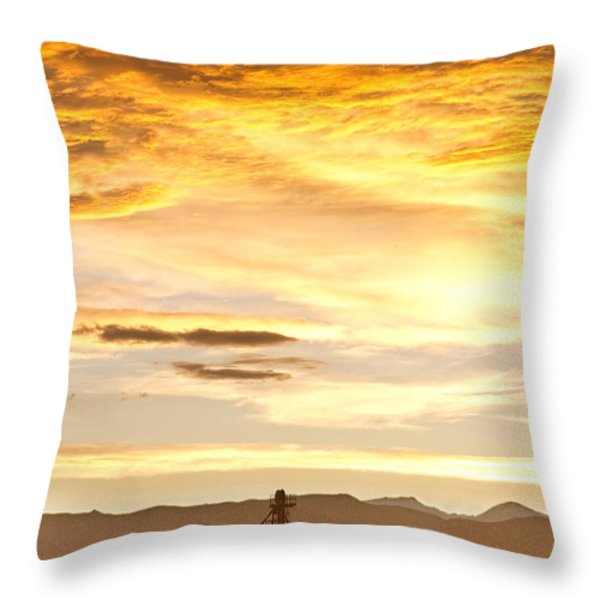 Chicken Farm Sunset 1 Throw Pillow by James BO  Insogna