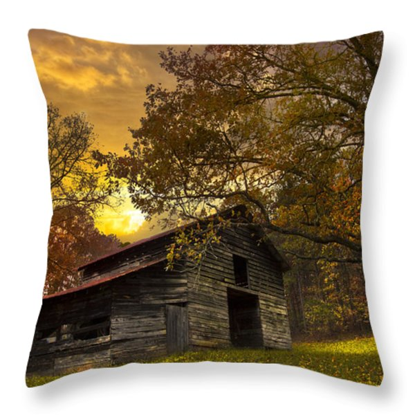 Chill Of An Early Fall Throw Pillow by Debra and Dave Vanderlaan