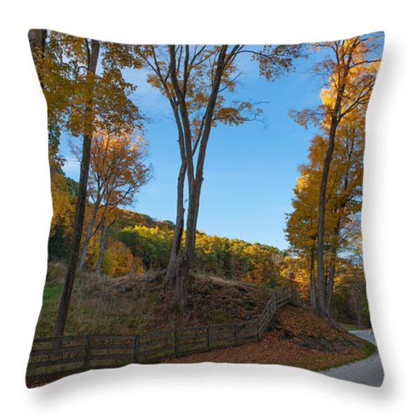 Chillin' on a Dirt Road Throw Pillow by Bill  Wakeley
