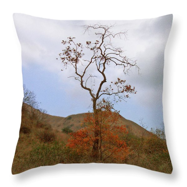 Chino Hills Tree Throw Pillow by Ben and Raisa Gertsberg