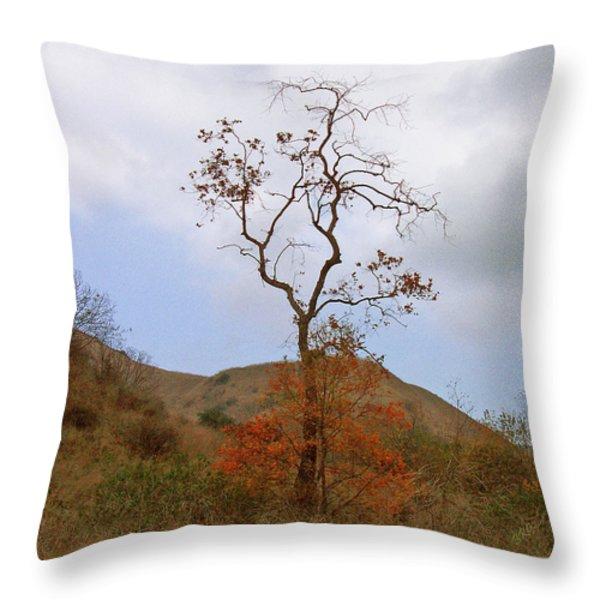 Chino Hills Tree Throw Pillow by Ben and Raisa Gertsberg