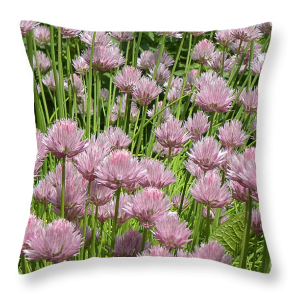 Chive Blossoms 2010 Throw Pillow by Joseph Duba