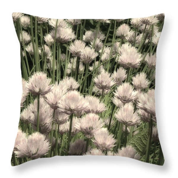 Chive Blossoms In White Throw Pillow by Joseph Duba