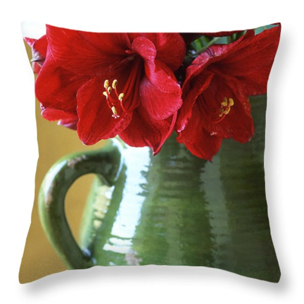 Christmas Amaryllis Throw Pillow by Kathy Yates