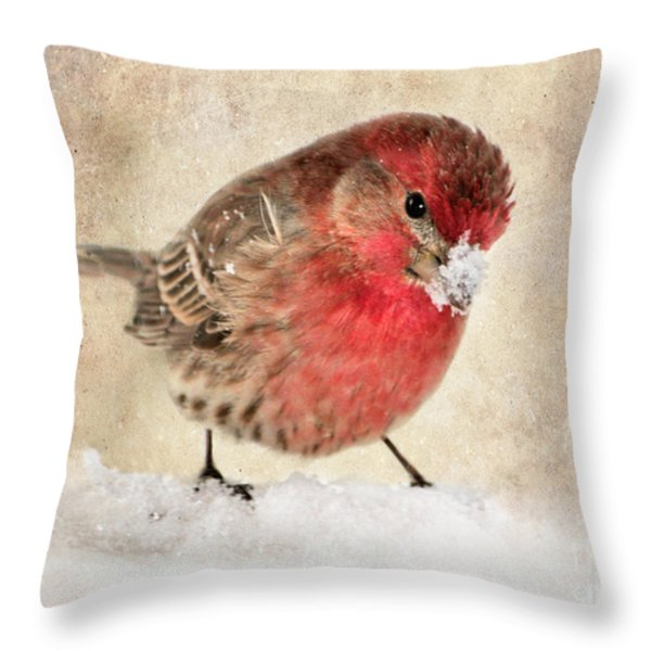 Christmas Card 9 Throw Pillow by Betty LaRue