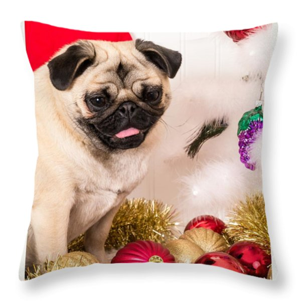 Christmas Morning Throw Pillow by Edward Fielding