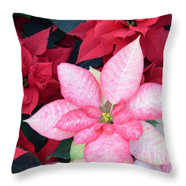 Christmas Pointsettia Throw Pillow by Kathleen Struckle