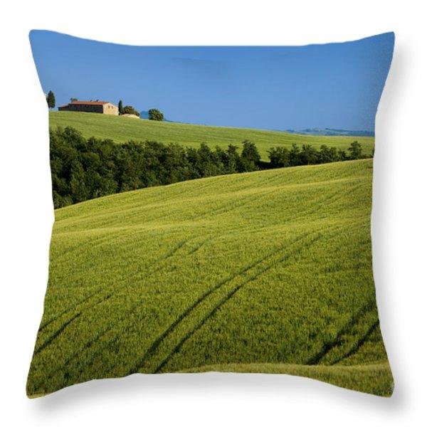 Church in the Field Throw Pillow by Brian Jannsen