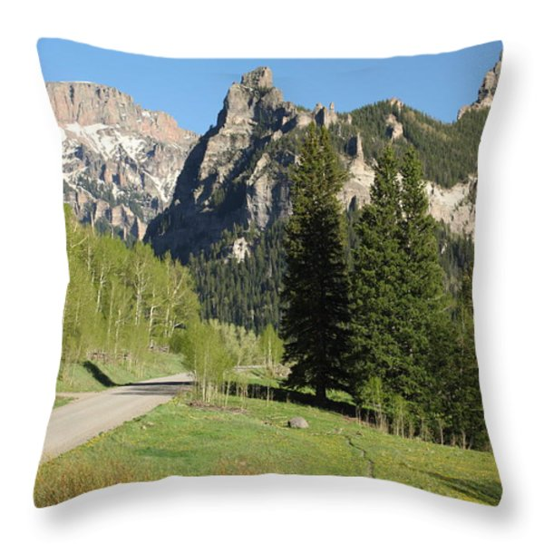 Cimarron Country Throw Pillow by Eric Glaser
