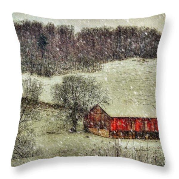 Circa 1855 Throw Pillow by Lois Bryan