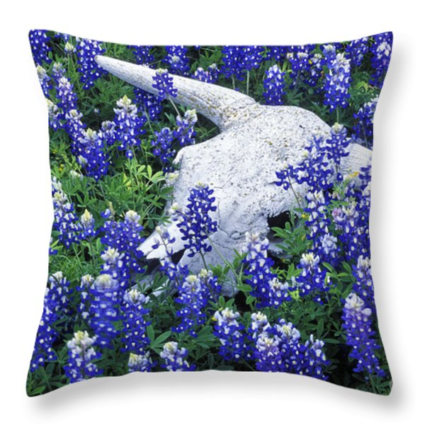 Circle of Life - FS000058 Throw Pillow by Daniel Dempster