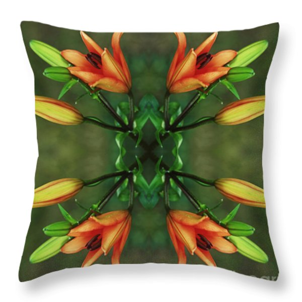 Circle Of Life Throw Pillow by Inspired Nature Photography By Shelley Myke