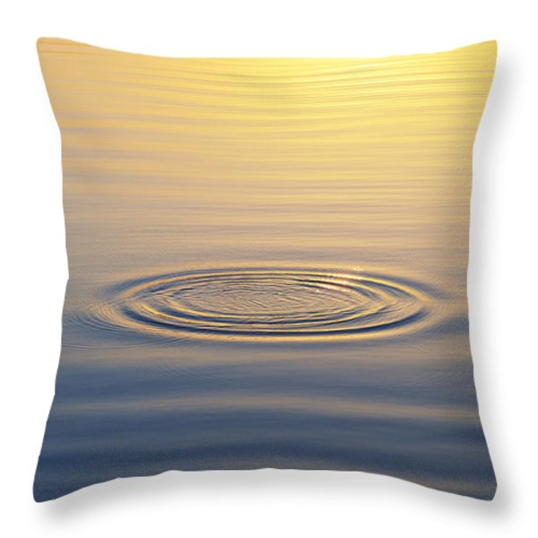 Circles At Sunrise Throw Pillow by Tim Gainey