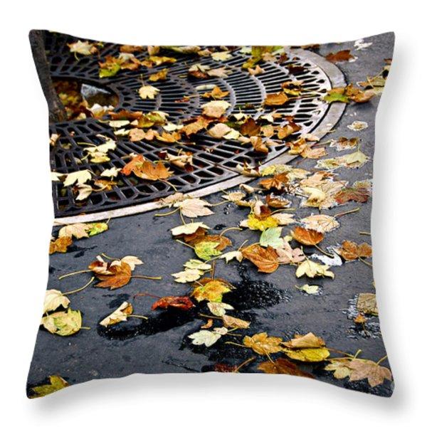 City Fall Throw Pillow by Elena Elisseeva