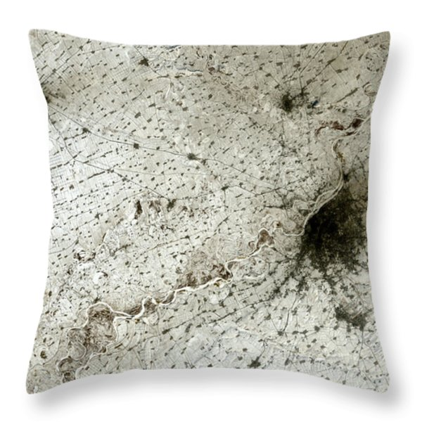 City Of Harbin Mandchouria China Throw Pillow by Anonymous