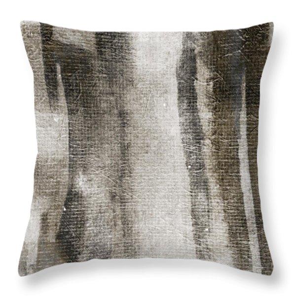 Civil Nightfall Throw Pillow by Brett Pfister
